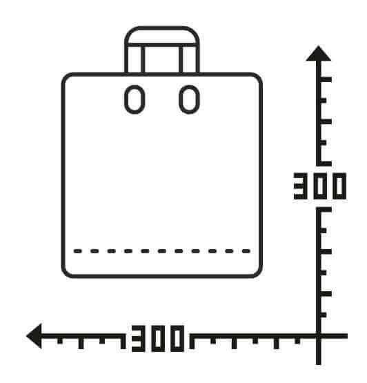 Пакеты с логотипом с петлевой ручкой 300*300, 50 мкм, LDPE -Chernigov Package - Фото Петля_30х30
